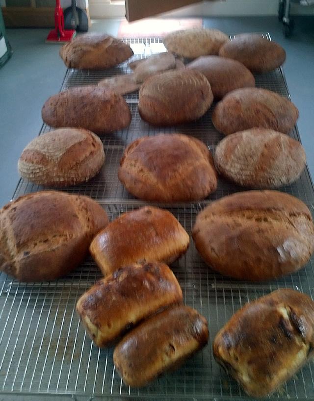 bake 004 small