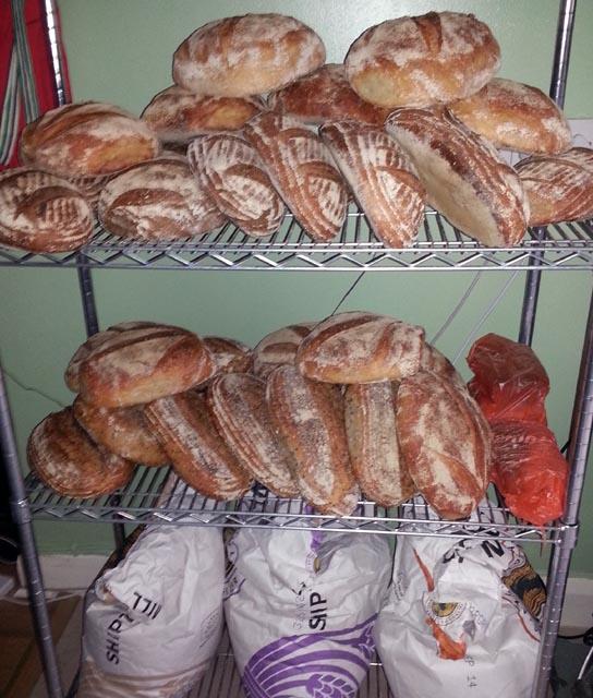 adam bread 002 small