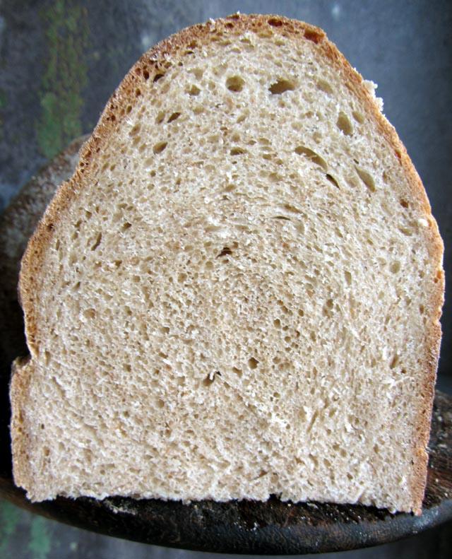 fermentee crumb 001 small
