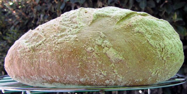 crust 002 small
