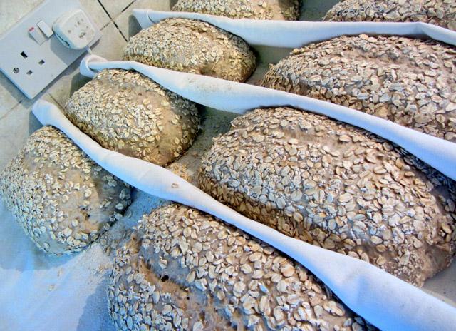 oatproved 001 small
