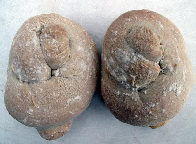 1st-buns-002-small