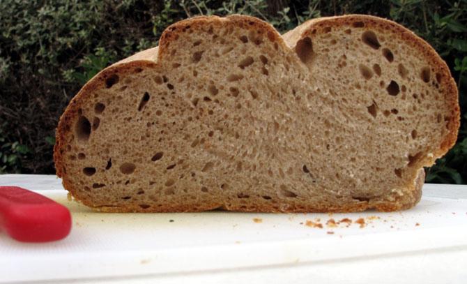 crumb-004-small
